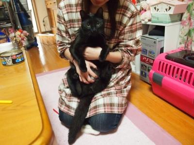 黒猫のタンゴ06