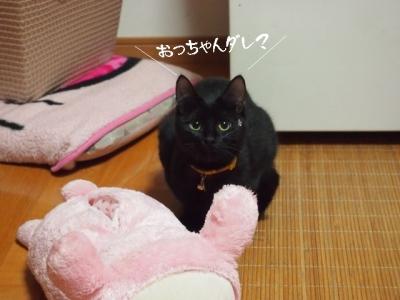 黒猫のタンゴ08