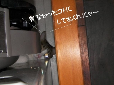 隠れや03