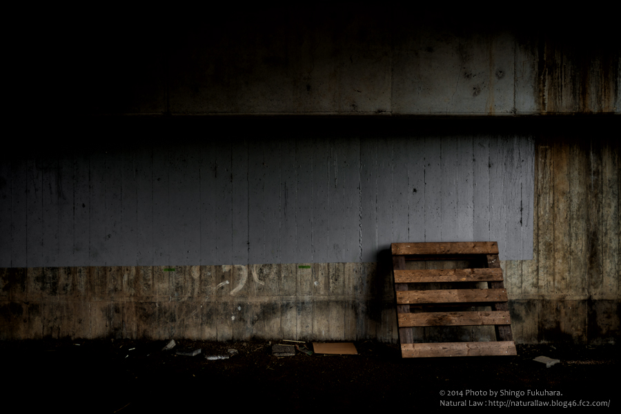 DSC_5828-Edit-Lightroom.jpg