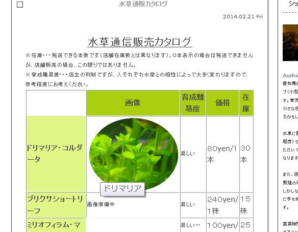 IMGP231601.jpg