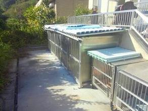 縮日光浴犬舎