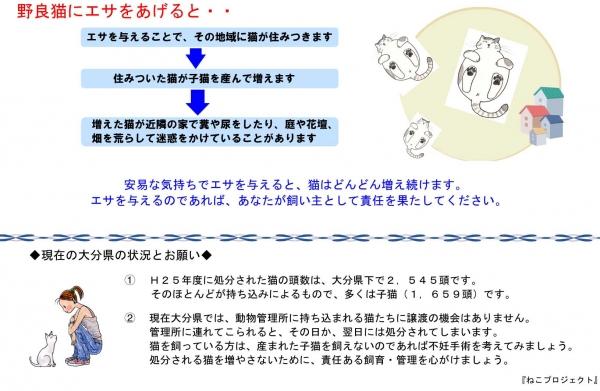 ねこプロチラシ-2