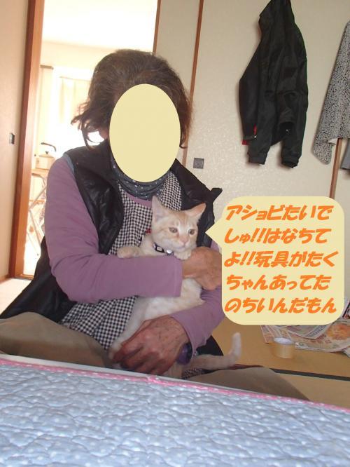 PB102398+(2)_convert_20141111093825.jpg