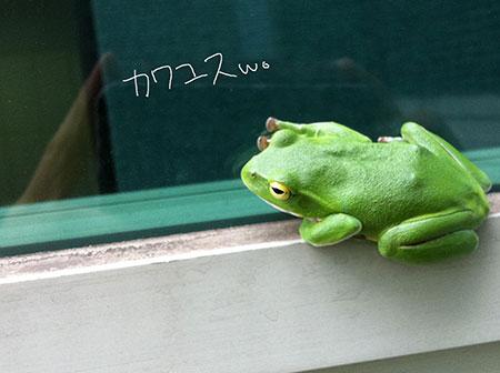 20140217_3.jpg