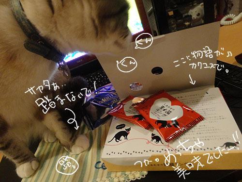 20140331_3.jpg