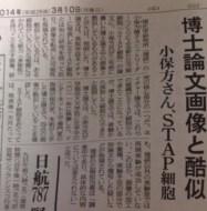 【終了】 STAP小保方晴子さん、論文がほぼ捏造であることが確定  一般紙も報道し始める