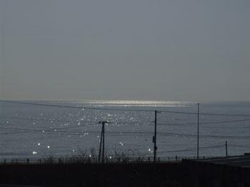 20140324_泊津海2