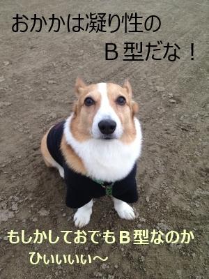 jirojiro77.jpg
