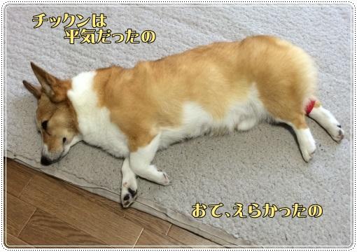kennsago.jpg