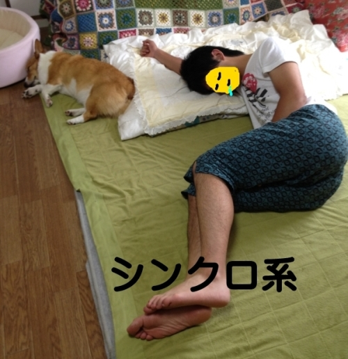 shinnkuro788.jpg