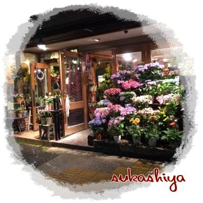 sukashiya.jpg