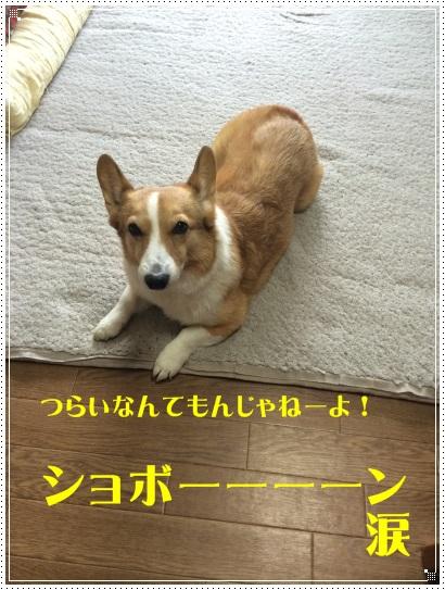 turaijiro.jpg