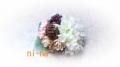 DCF00047_201403051149389d7.jpg