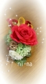 DCF00083_20140320103001d33.jpg