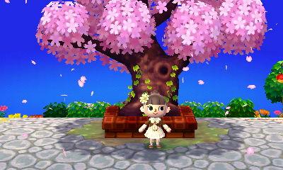 桜散る記念樹