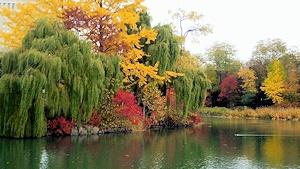 中島公園その1