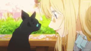 黒猫とかをり