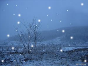 virgin snow イメージその2