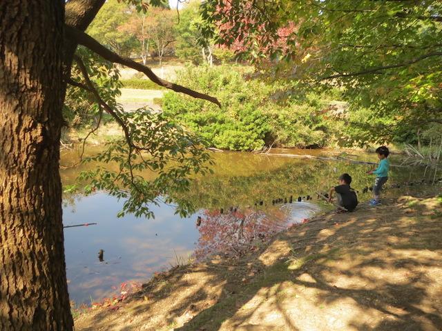 休憩タイム みそしる池