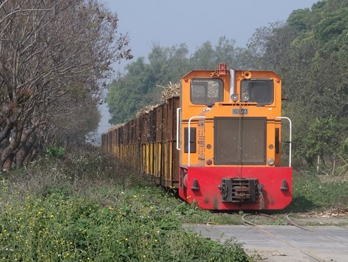 s500-DSC06921.jpg