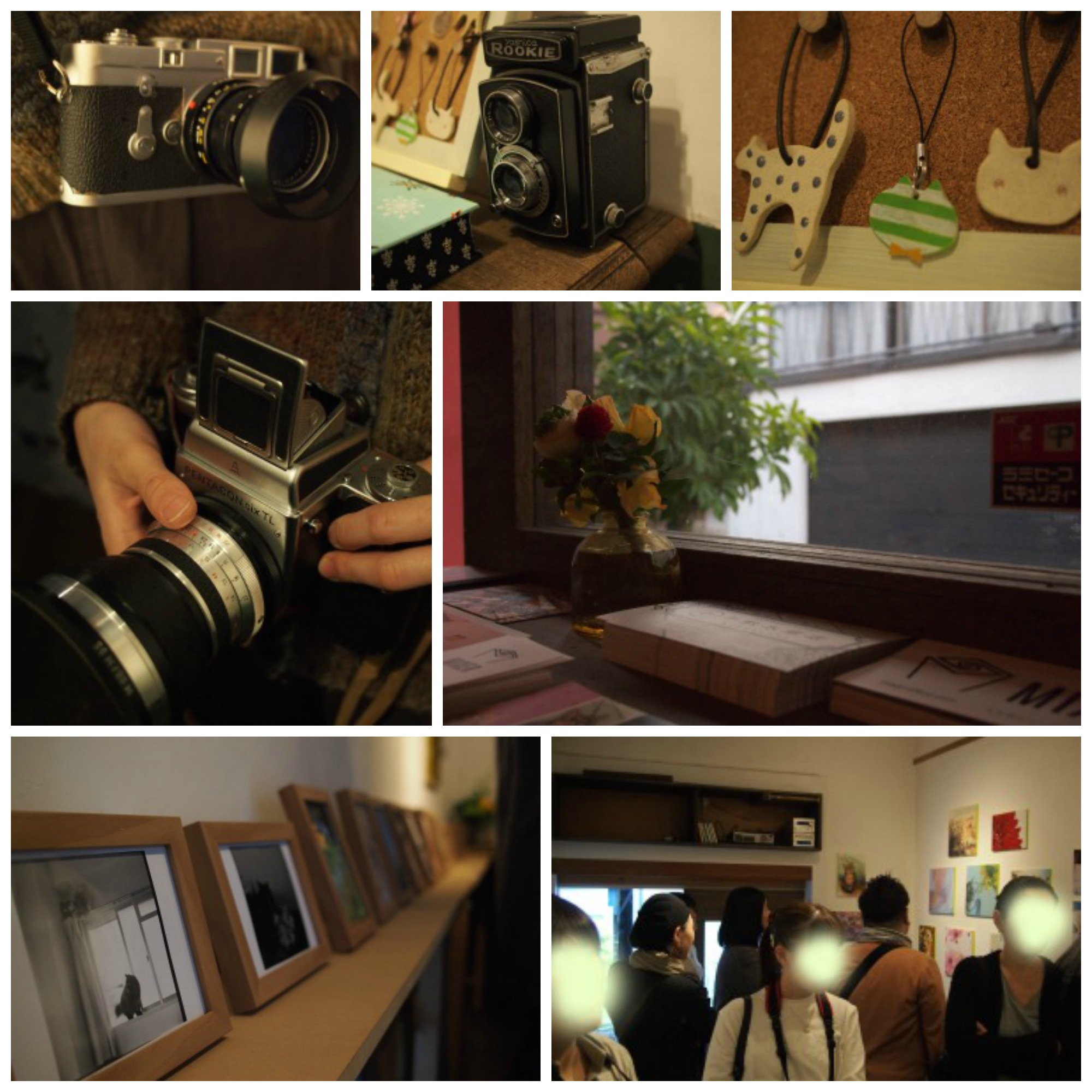NecoHana_Collage2.jpg