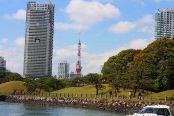 船から見た東京タワー