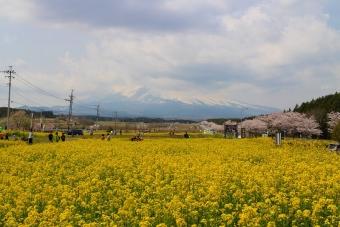 雲と富士山のすその