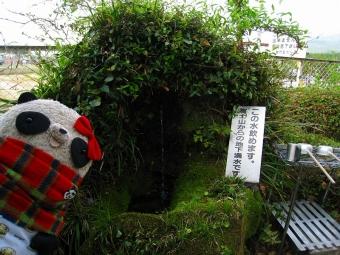 富士山の湧水