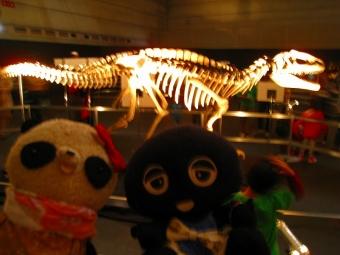 ばぶクロin恐竜ワールド
