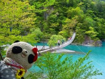 ばぶちゃん寸又峡夢の吊り橋にて