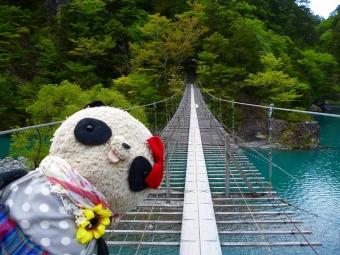 夢の吊り橋の上でどーん