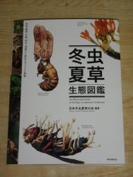 140810本 (3)s