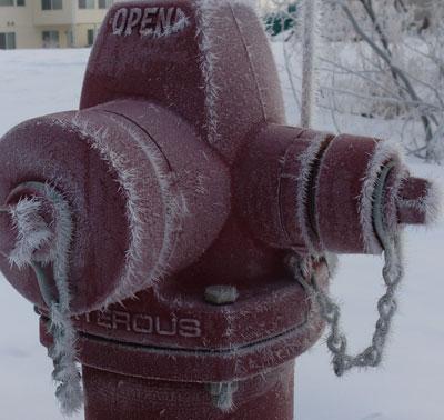 frost03201404.jpg
