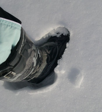 sledding02181417.jpg