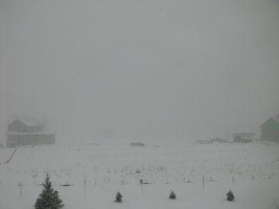 snow02151401.jpg