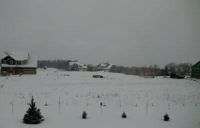 snow02151402.jpg