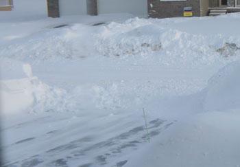 snow02211407.jpg