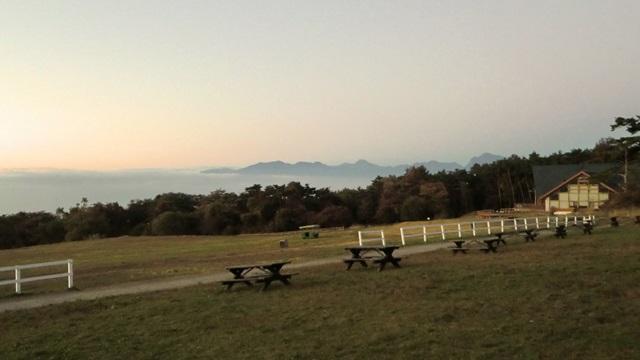 早朝の牧草地