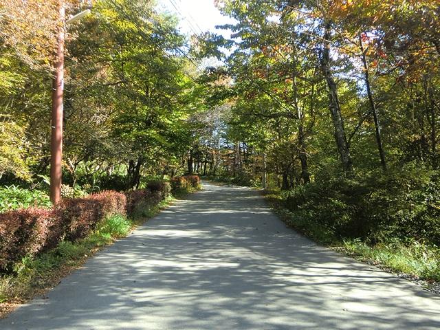清泉寮の周りを散策、その1