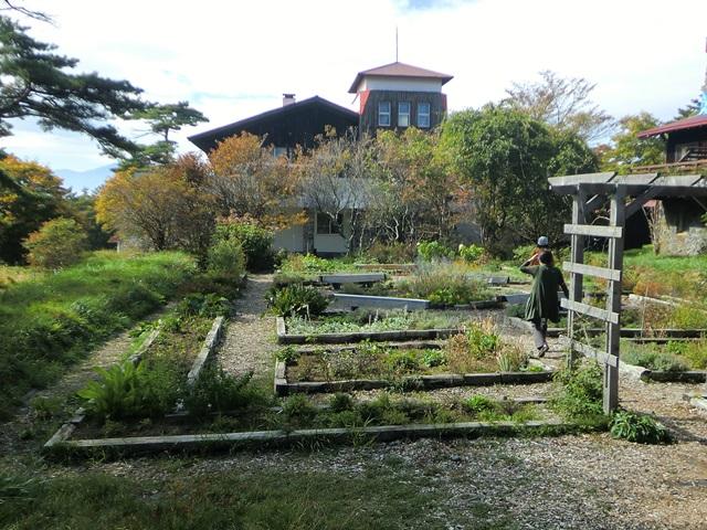 ささやかな庭園