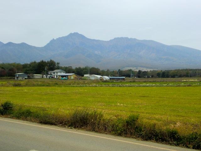 道路から眺めた八ヶ岳