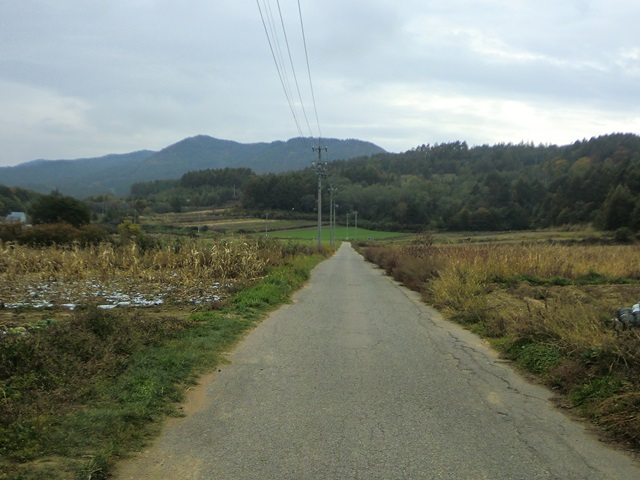 野辺山高原のサイクリング光景1