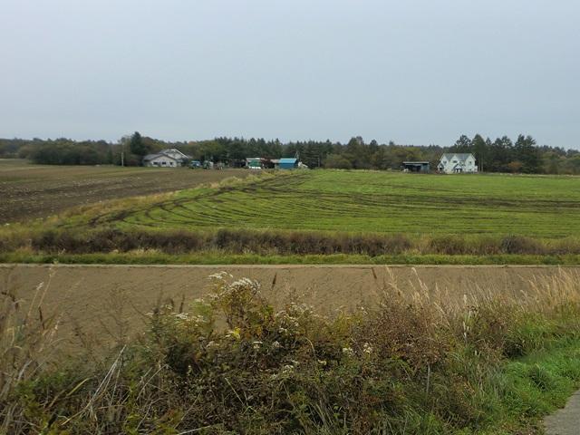 野辺山高原のサイクリング光景2
