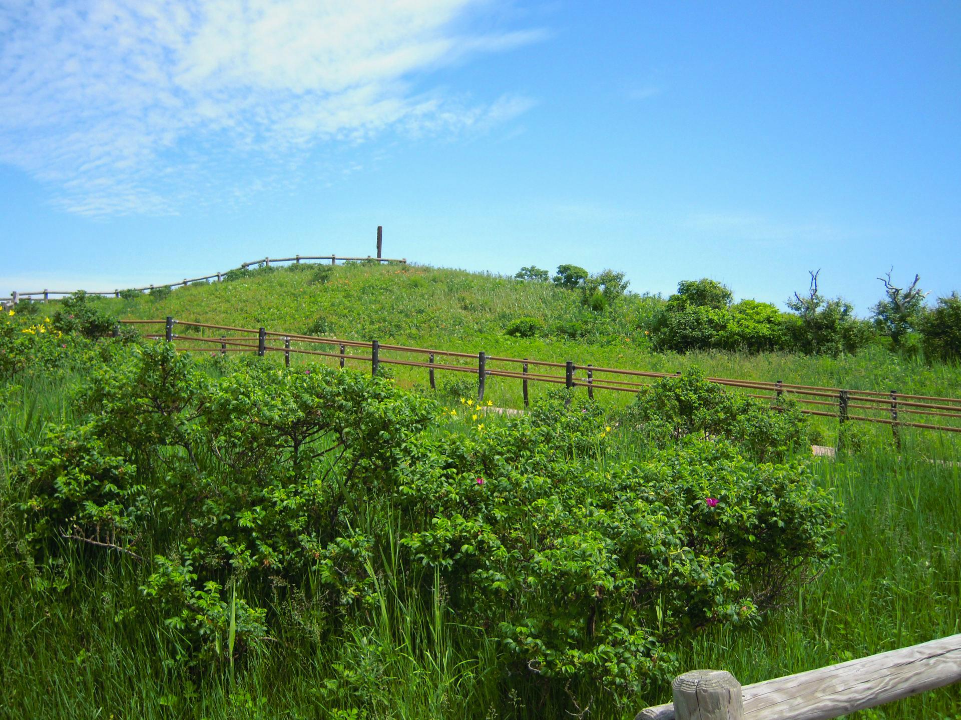 小清水原生花園にある丘