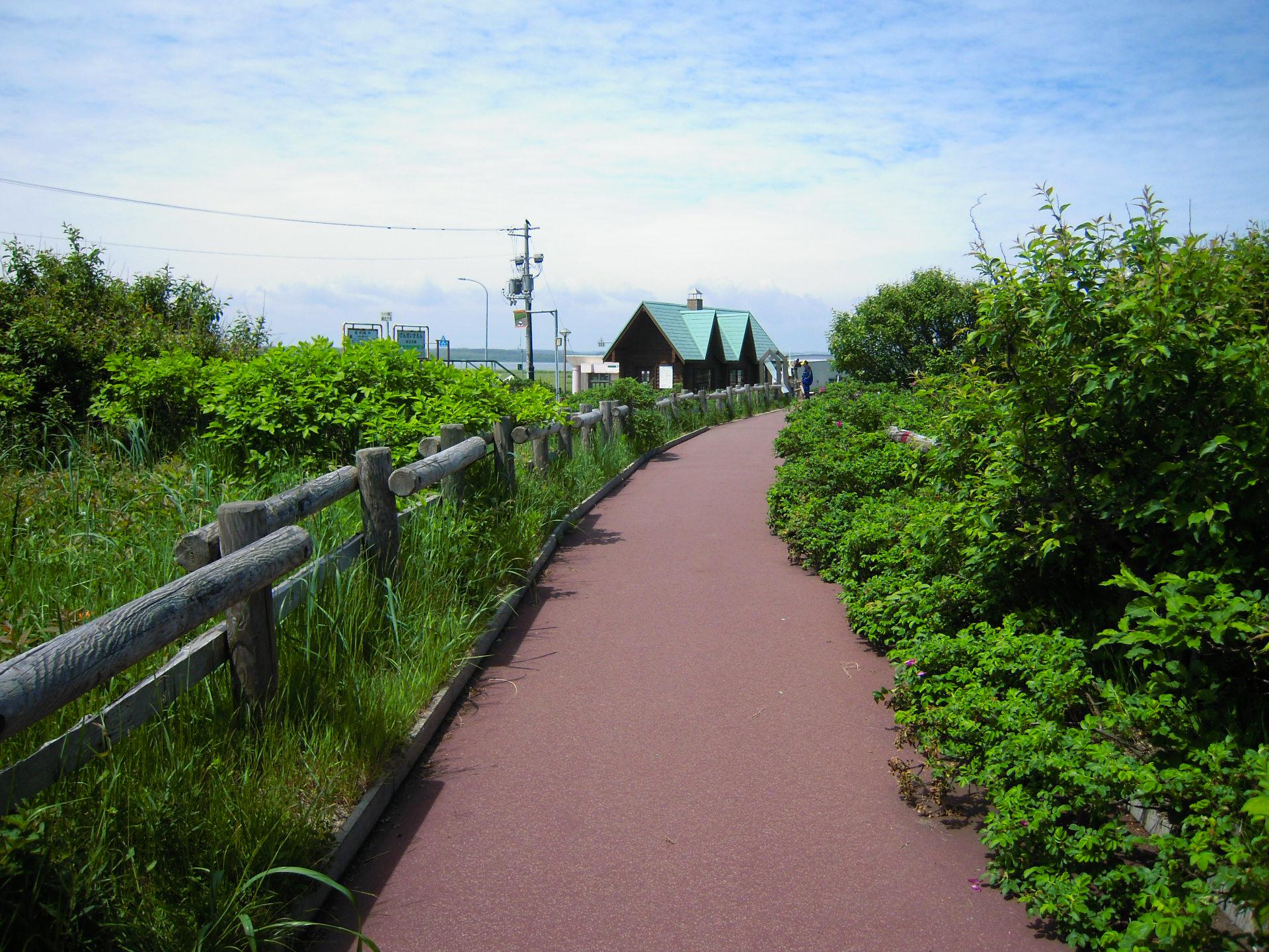 小清水原生花園の遊歩道