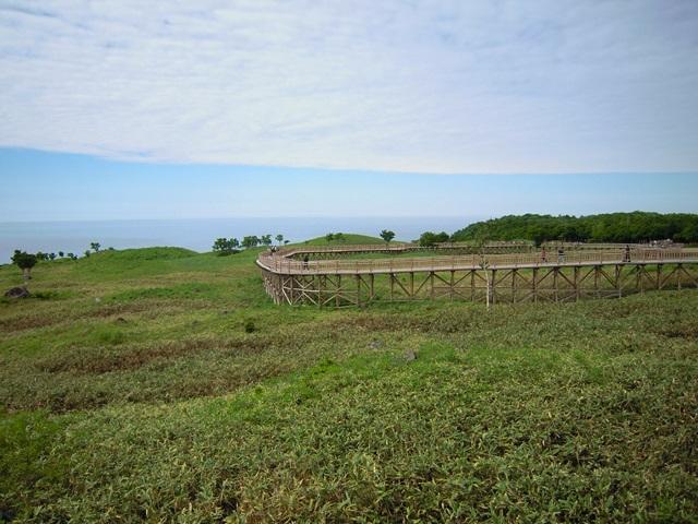 草原の上にある高架木道