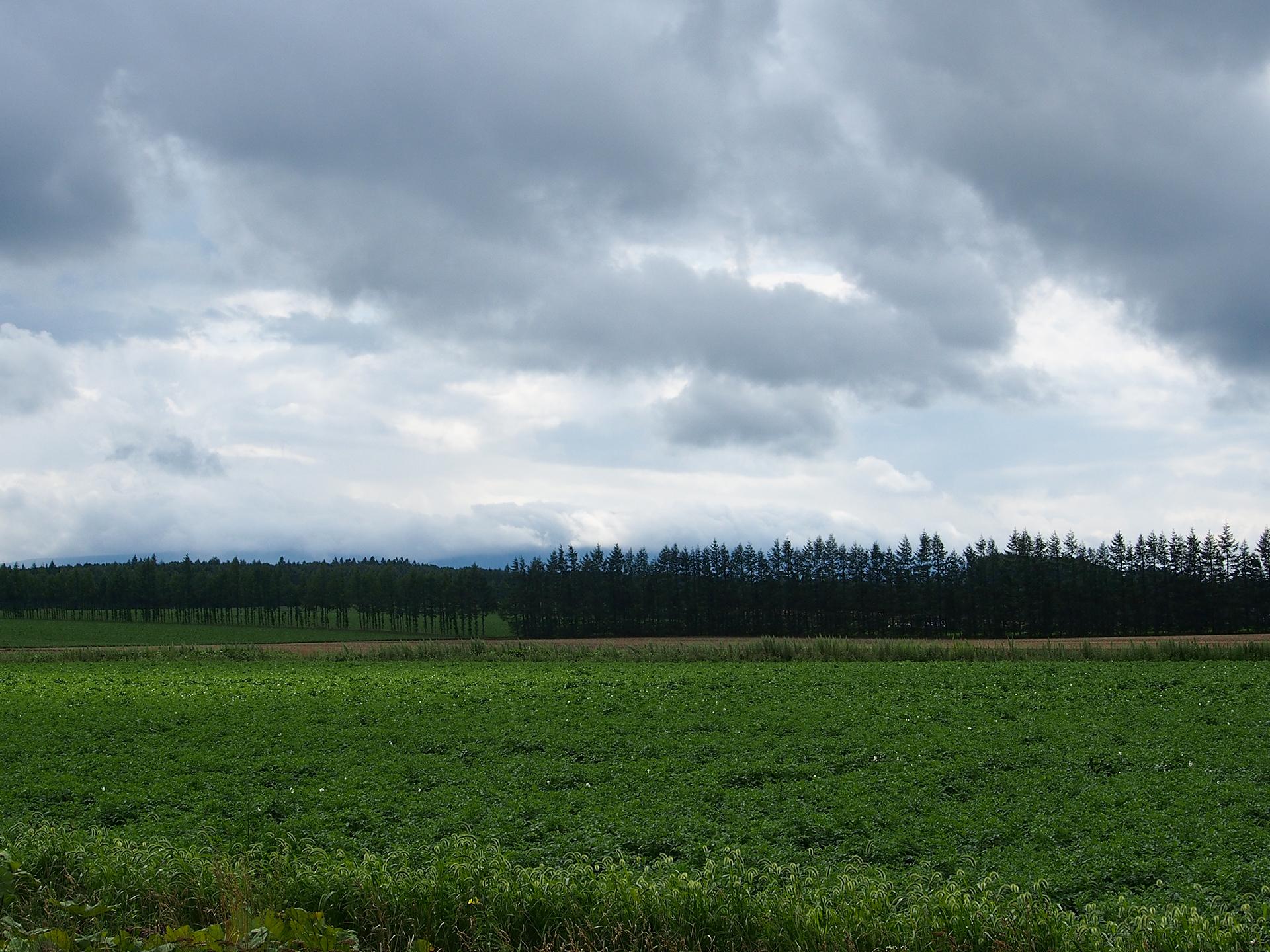 道東の曇り空