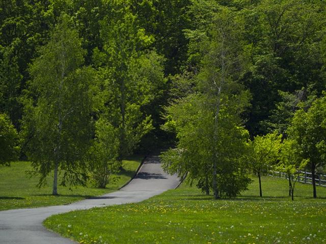 宮丘公園にある森林道への入り口