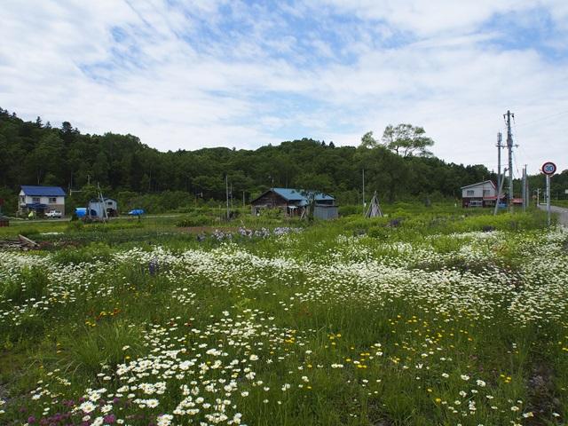 恵比島駅の駅前に広がる空き地